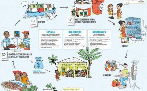 Fairtrade – Zusammenspiel von Ökologie und Wirtschaft